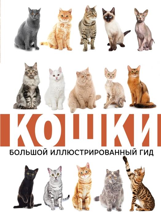 Непомнящий Н. Кошки