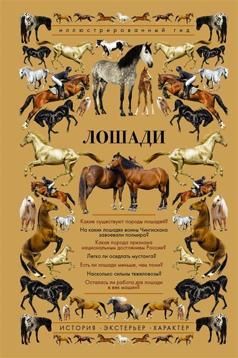 Фото - Спектор А. Лошади Иллюстрированный гид спектор анна артуровна лошади иллюстрированный гид