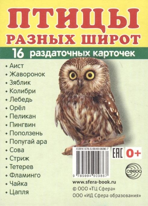 Птицы разных широт 16 раздаточных карточек перелетные птицы 16 раздаточных карточек