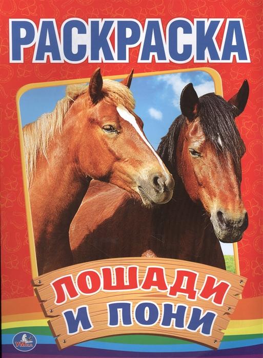 Козырь А. (ред.-сост.) Лошади и пони Раскраска бологова в ред лошади и пони забавные наклейки более 60 наклеек