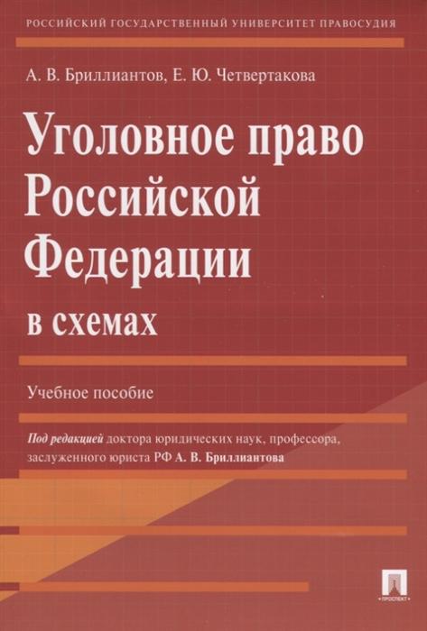 Бриллиантов А., Четвертакова Е. Уголовное право Российской Федерации в схемах Учебное пособие недорого