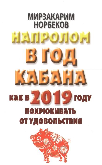Напролом в год Кабана Как в 2019 году похрюкивать от удовольствия