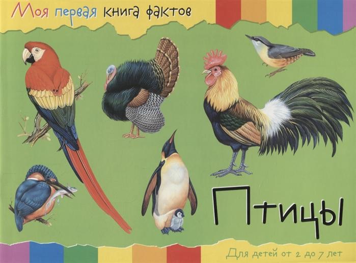 Купить Птицы Для детей от 2 до 7 лет, НД Плэй, Первые энциклопедии для малышей (0-6 л.)