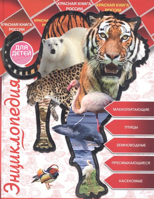 Соколова Л. Энциклопедия для детей Красная книга России цена в Москве и Питере
