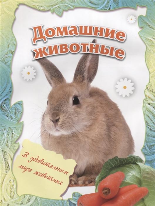 все цены на Кошелева А. (ред.) Домашние животные онлайн