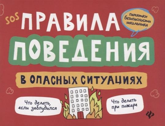 Фото - Толмачев А. Правила поведения в опасных ситуациях толмачев а правила поведения в опасных ситуациях