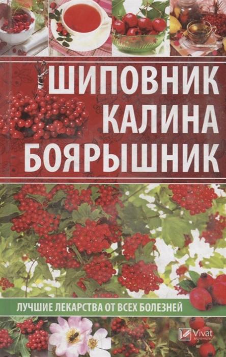 Сайдакова Р. Шиповник калина боярышник Лучшие лекарства от всех болезней