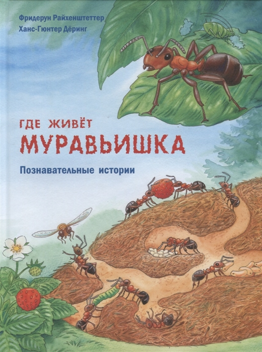 Райхенштеттер Ф. Где живет муравьишка Познавательные истории райхенштеттер ф где живёт муравьишка познавательные истории
