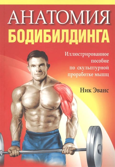 Анатомия бодибилдинга Иллюстрированное пособие по скульптурной проработке мышщ