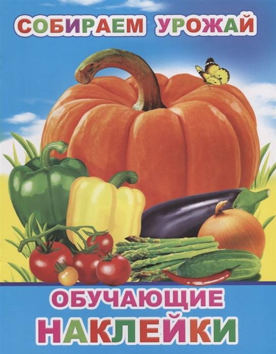 Собираем урожай Обучающие наклейки