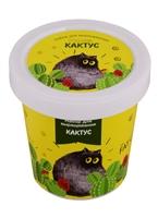 Набор для выращивания Кактус (Fat cat)