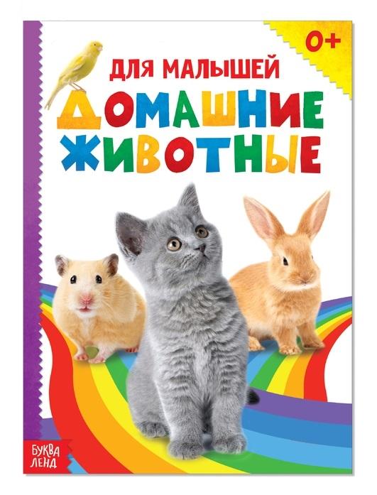 Купить Домашние животные для малышей, БУКВА-ЛЕНД, Первые энциклопедии для малышей (0-6 л.)