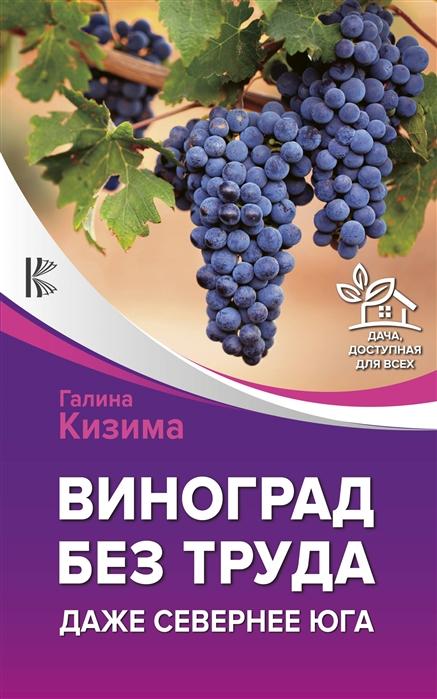 Кизима Г. Виноград без труда Даже севернее юга аминокислоты bcaa bsn amino x виноград 435 г