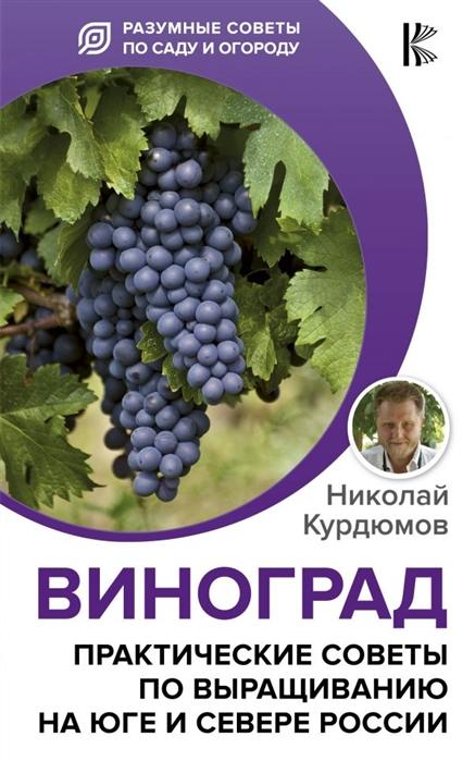 Курдюмов Н. Виноград Практические советы по выращиванию на юге и севере России курдюмов н как и от чего защитить виноград