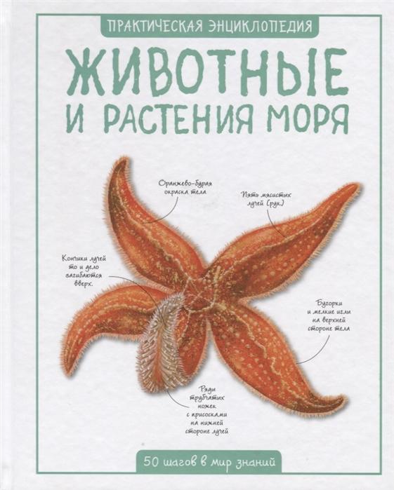 Купить Животные и растения моря 50 шагов в мир знаний, Махаон, Естественные науки