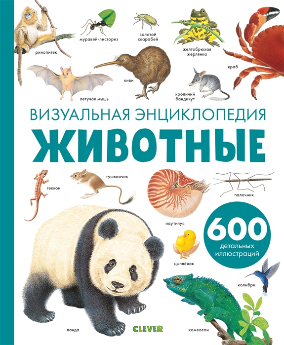 Гравье-Бадреддин Д. Животные Визуальная энциклопедия