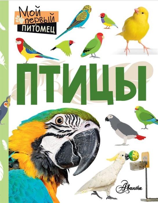Аронова Н. Птицы наталия аронова птицы
