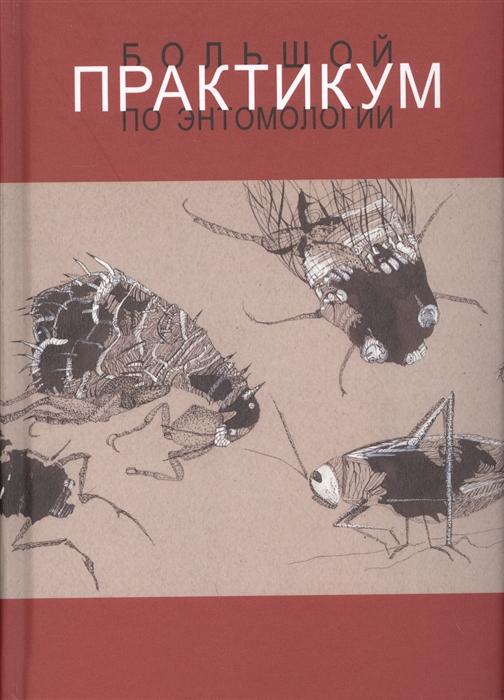 Беляева Н., Бенедиктов А., Галинская Т. Большой практикум по энтомологии Учебное пособие цена