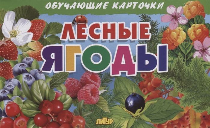 Глушкова Н. (худ.) Лесные ягоды Обучающие карточки