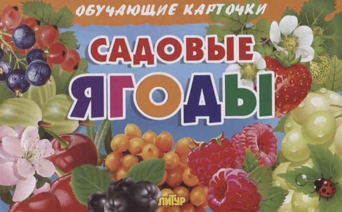 Глушкова Н. (худ.) Садовые ягоды Обучающие карточки