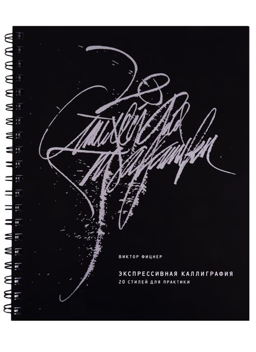 Фицнер В. Экспрессивная каллиграфия 20 стилей для практики фицнер виктор экспрессивная каллиграфия 20 стилей для практики
