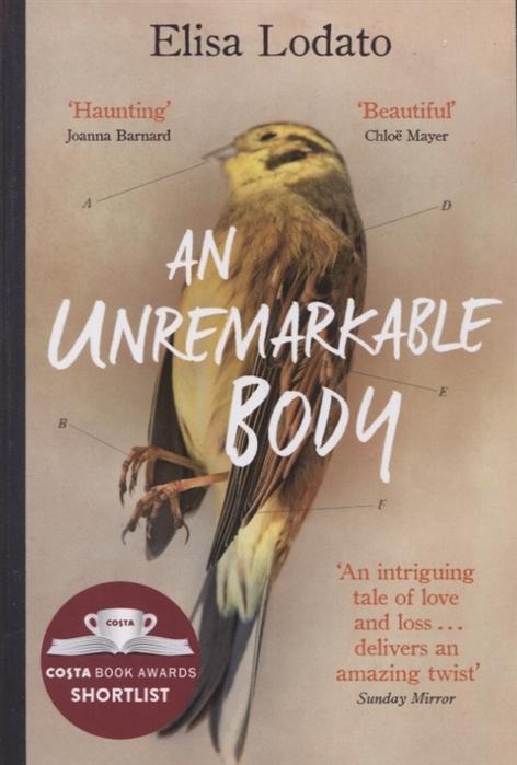 Lodato E. An Unremarkable Body