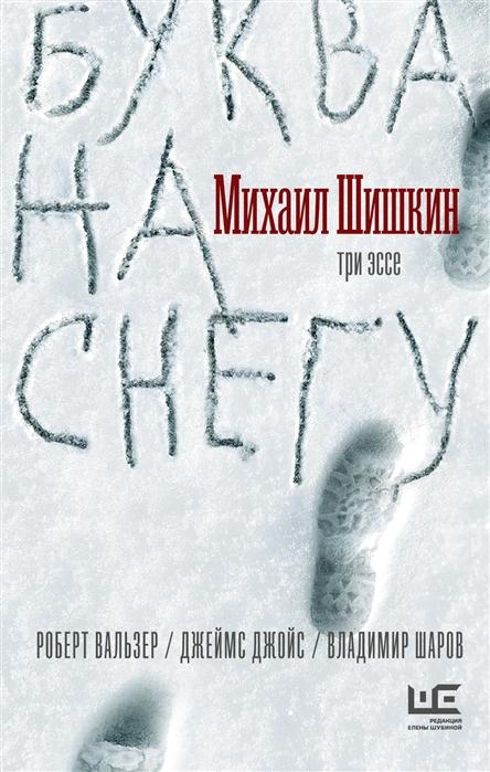 Шишкин М. Буква на снегу