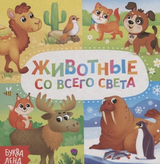 Фото - Сачкова Е. Животные со всего света снегирёва е животные