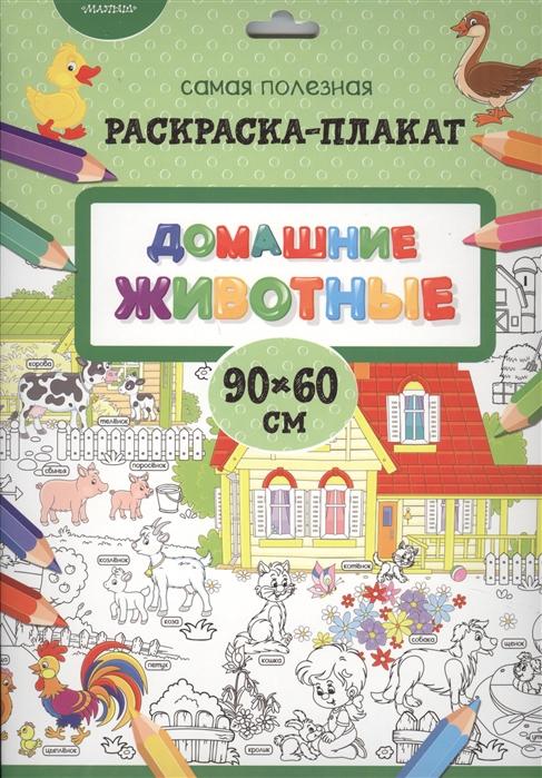Купить Домашние животные Раскраска-плакат, АСТ, Раскраски