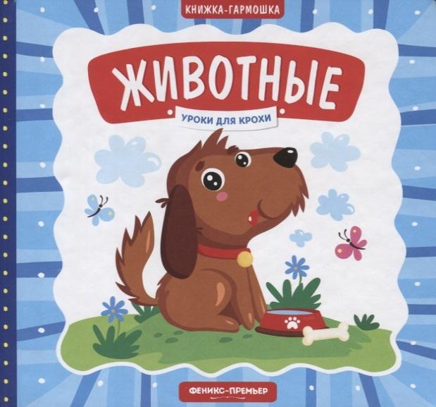 Купить Животные Книжка-гармошка, Феникс, РнД, Книги - игрушки