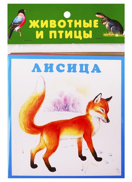 цены на Цыганков И. (илл.) Животные и птицы Карточки  в интернет-магазинах