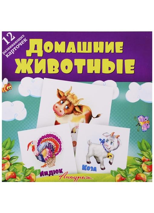 Смирнова С. (илл.) Домашние животные Развивающие карточки
