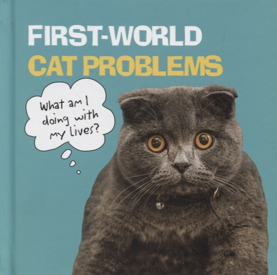 First World Cat Problems What Am I Doing with My Lives
