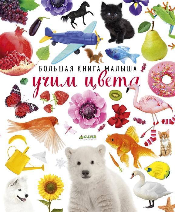 Попова Е., Рами Л. Большая книга малыша Учим цвета ирина попова большая книга для мам