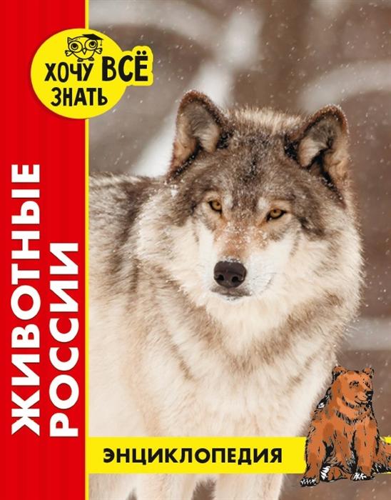 Купить Животные России Энциклопедия, Проф - Пресс, Естественные науки