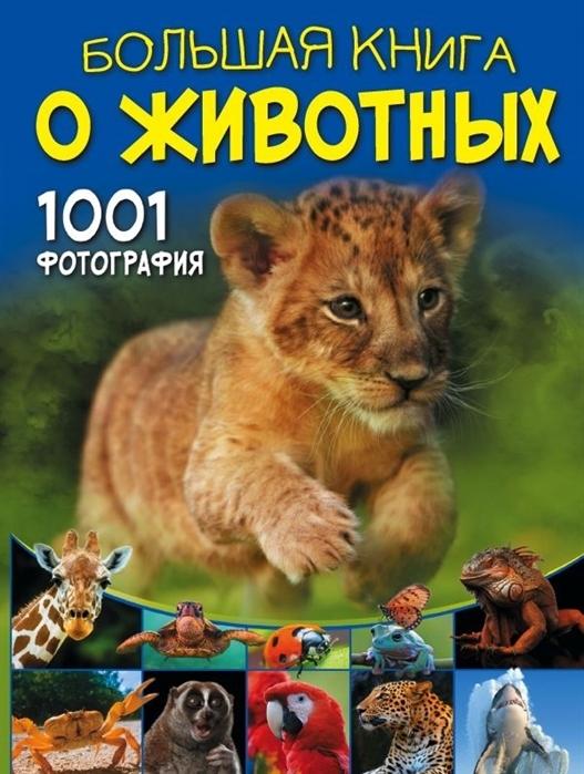 барановская и ермакович д моя первая большая книга о динозаврах Ермакович Д. Большая книга о животных 1001 фотография