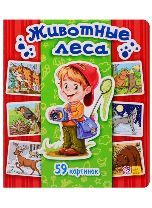 Купить Животные леса 59 картинок, Ранок, Первые энциклопедии для малышей (0-6 л.)