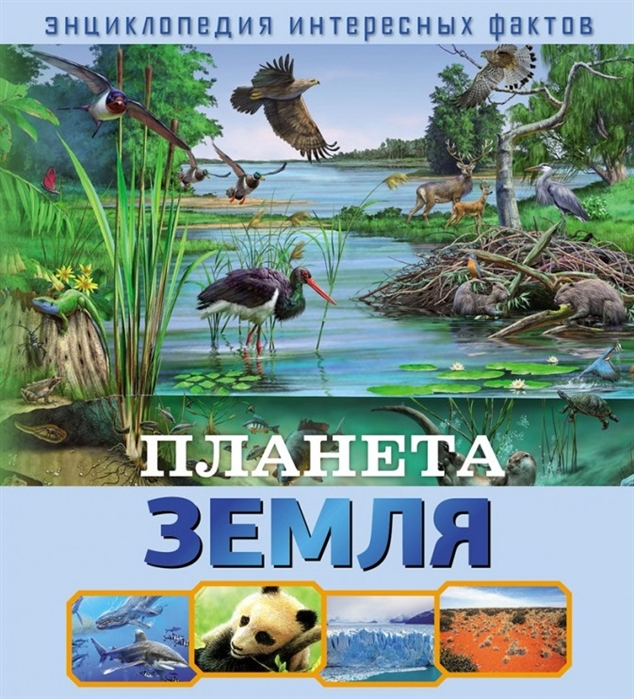 Купить Планета Земля, НД-Плэй, Естественные науки