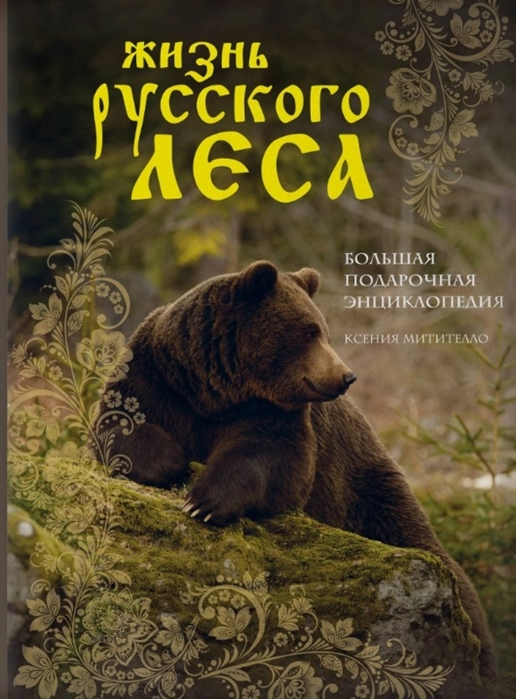Жизнь русского леса Большая подарочная энциклопедия