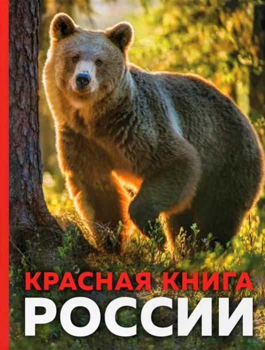 Скалдина О. Красная книга России скалдина о слиж е красная книга земли редкие и исчезающие виды