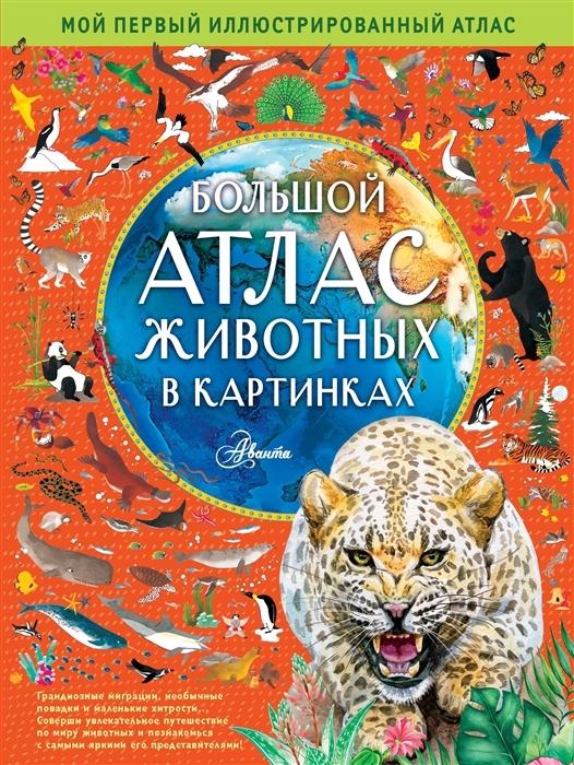Купить Большой атлас животных в картинках, АСТ, Естественные науки