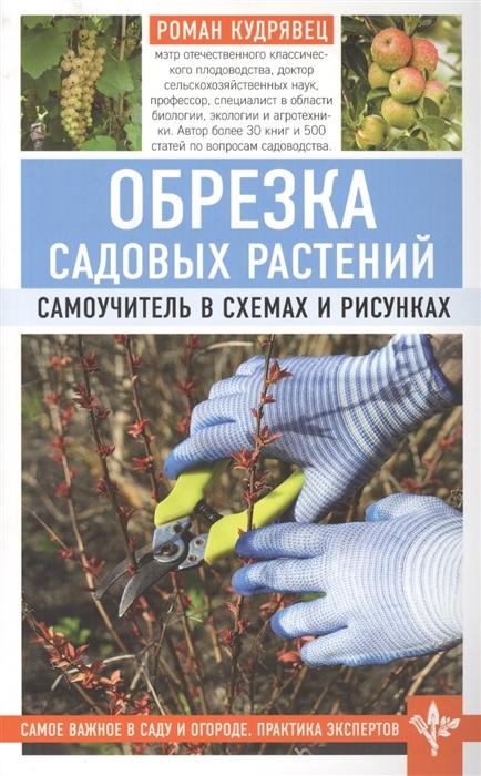 Кудрявец Р. Обрезка садовых растений Самоучитель в схемах и рисунках