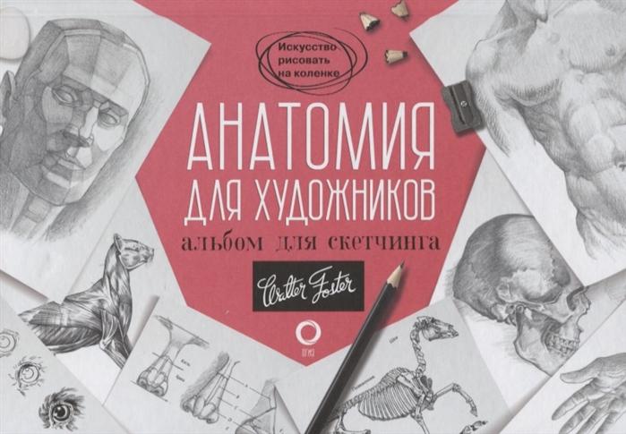 Фото - Чудова А. (ред.) Анатомия для художников Альбом для скетчинга дашко и ред анатомия и йога