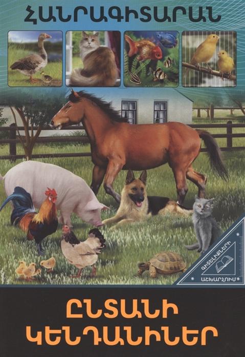В мире знаний Домашние животные на армянском языке в мире знаний детеныши животных на армянском языке