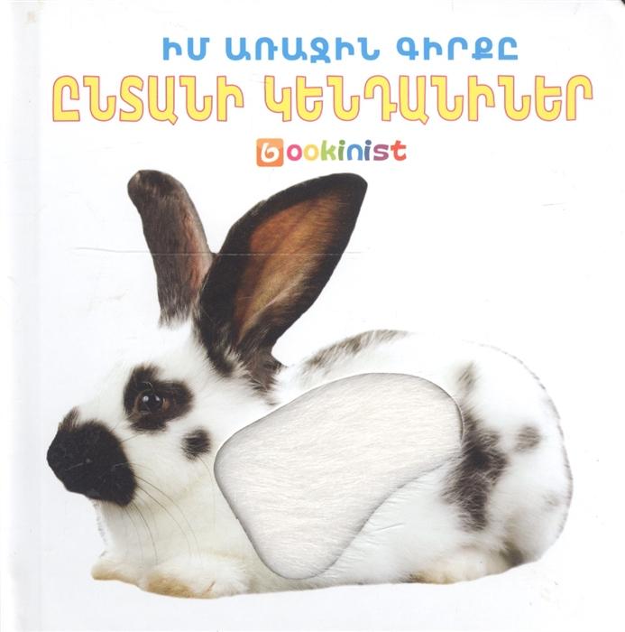 Моя первая книга Домашние животные на армянском языке первая книга для мальчиков на армянском языке