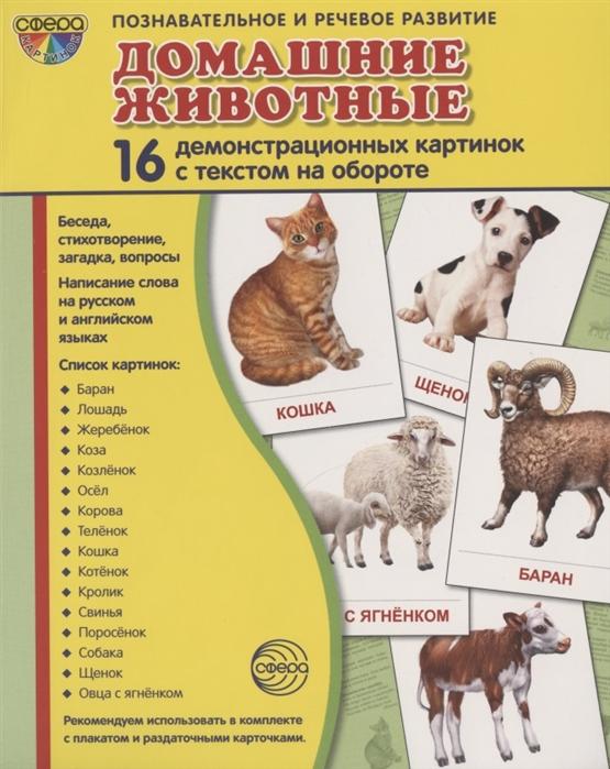 Фото - Цветкова Т. Домашние животные 16 демонстрационных картинок с текстом на обороте цветкова т насекомые 16 демонстрационных картинок