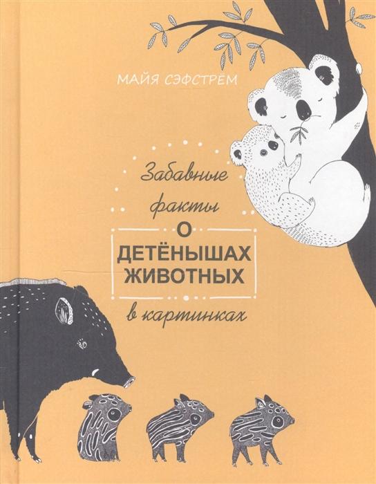 Купить Забавные факты о детенышах животных в картинках, Попурри, Естественные науки