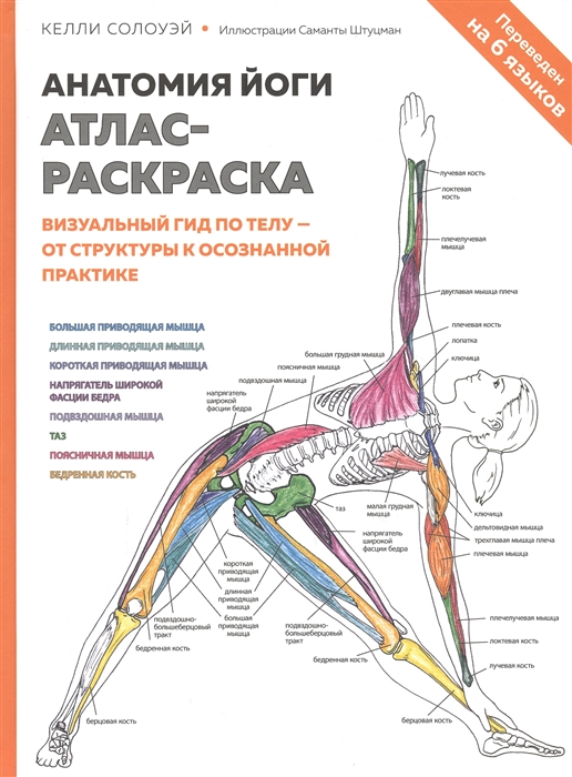 Анатомия йоги атлас-раскраска Визуальный гид по телу - от структуры к осознанной практике