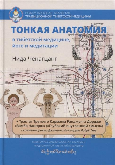 Фото - Ченагцанг Н. Тонкая анатомия в тибетской медицине йоге и медитации Ключ к энергетической структуре человека ченагцанг н тибетская медицина основы исцеления