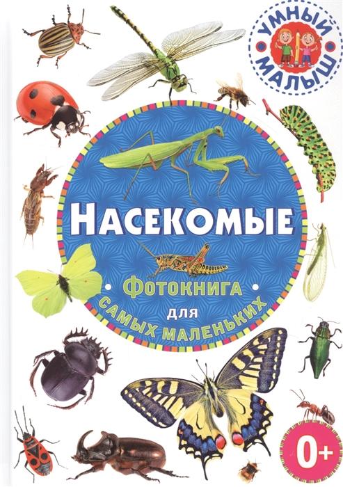 Феданова Ю., Скиба Т., Машир Т. (ред.) Насекомые Фотокнига для самых маленьких скиба т в удивительные насекомые